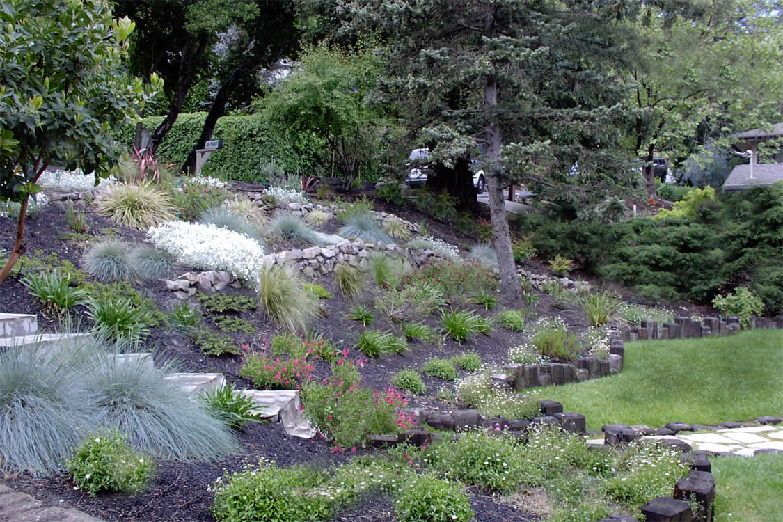 Home garden designs landscaping a hillside for Hillside landscaping